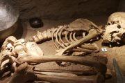 Sala de Prehistoria Viajes Iverem